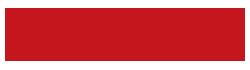 logo lv